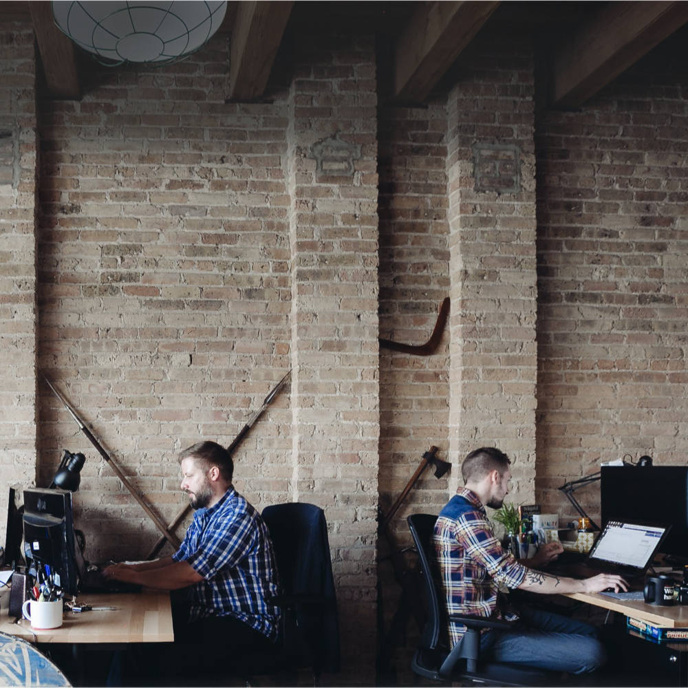 web designers working