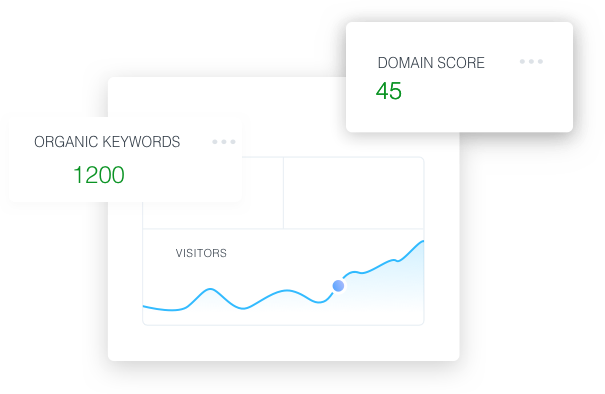 Website analysis with domain score.